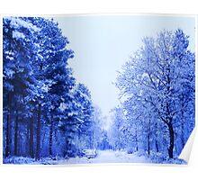 Winter Wonderland Walk - No. 2 Poster