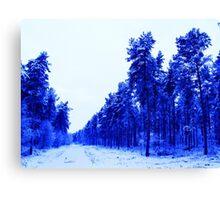 Snowy Woodland Walk in Blue Canvas Print