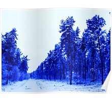 Snowy Woodland Walk in Blue Poster