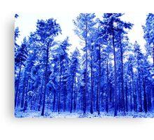 Snowy Blue Trees Canvas Print