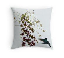 Humming Bird - Martinique, FWI Throw Pillow