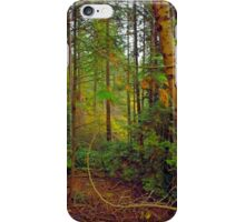 In Lighthouse Park, old-growth coastal rainforest iPhone Case/Skin