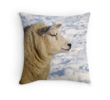 Texel sheep in the snow Throw Pillow