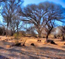RiverBottom 3 by DesertDweller