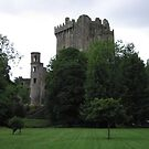 Blarney Castle - Blarney, Ireland by Jason Kiely