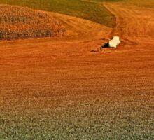 Colorful farmland scenery | landscape photography Sticker