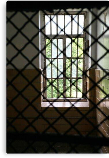 isolation room by jbiller