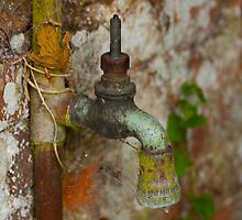 Rusty tap by evilcat