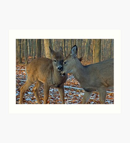 Deer sweet love Art Print