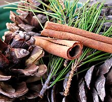 Pine Needles and Cones by cosmotose