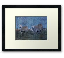 Five of the highlanders, some of them taking five Framed Print