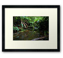 Hopetoun Creek Framed Print