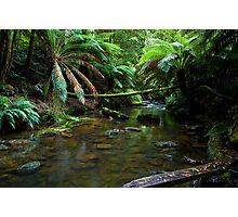 Hopetoun Creek Photographic Print
