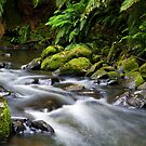 Hopetoun Stream by Matt  Streatfeild