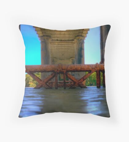 Drying of the Murray II Throw Pillow