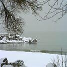Lake Michigan Shore's In Winter by kkphoto1