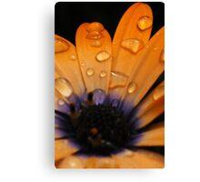 Macro Flower III Canvas Print