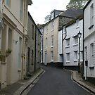 Charming winding streets of Fowey, Cornwall, UK by BronReid
