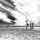 Waikerie, South Australia by Roberts Birze