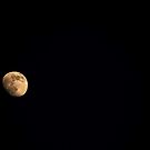 Lets Moon 'em  by John  Sperry