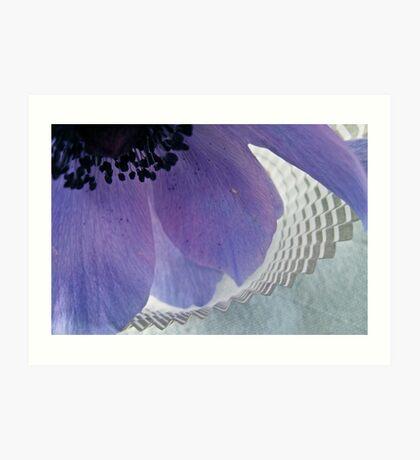 Anemone & Paper Art Print