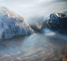 River Rush by Jenni Greene