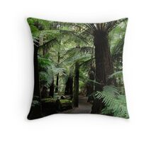 On the way to Liffy Falls Throw Pillow
