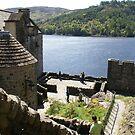 Eilean Donan Castle, Scotland 2 by BronReid