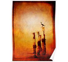 Huon River Sunset Poster