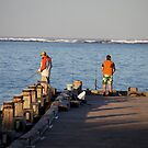 Fishing from the Jetty by Robert Stephens
