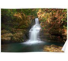Coachwood Falls, Dorrigo National Park Poster