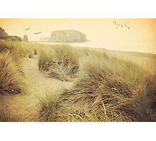 Vintage dunes Photographic Print