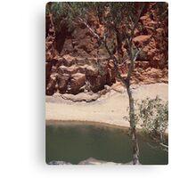 Resources and Camel Caravan Canvas Print