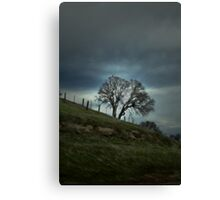 With An Open Heart Canvas Print