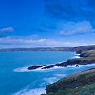 Port Gaverne  by David Wilkins