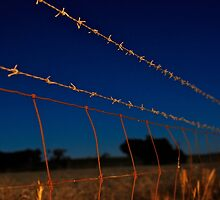 Along the Barbed Wire by James Torrington