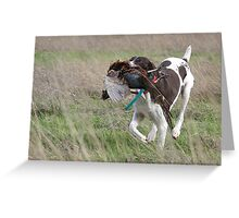 GSP Retrieving a Pheasant Greeting Card