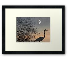 Soft And Tranquil Framed Print