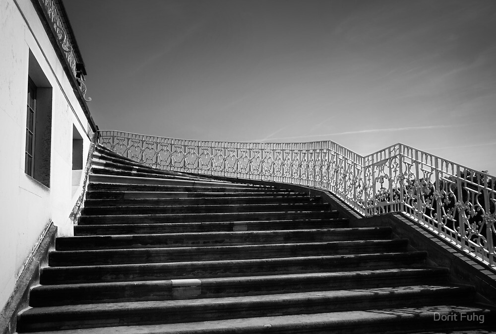 the king's steps by Dorit Fuhg