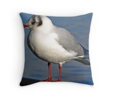 """ Its colder here then at Home"" Throw Pillow"
