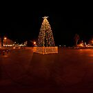 Bendigo Christmas Tree Panorama by Marcus Mawby