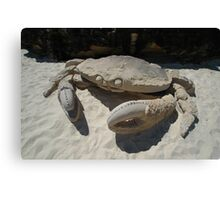 Crab @ Sculptures By The Sea 2010 Canvas Print