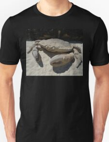 Crab @ Sculptures By The Sea 2010 T-Shirt