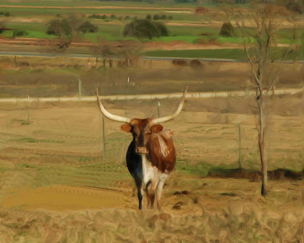 Lonely Longhorn by jabrwill