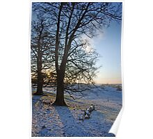 Britains Big Freeze-Snowy field at Dusk Poster
