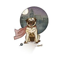 Captain pug! Photographic Print