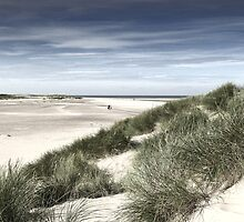 A walk on the Beach -Wells next the Sea  Norfolk by johnny2sheds