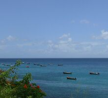 Fishing Boats on the Sea - Martinique, FWI by Olivia Son