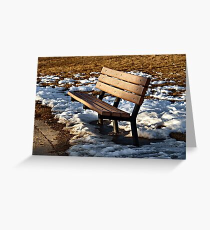 Too Cold for Comfort Greeting Card
