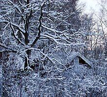 Under the Trees by Ritva Ikonen